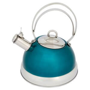Stove Top Stainless Steel Kettle in Teal, £15 from Wilko