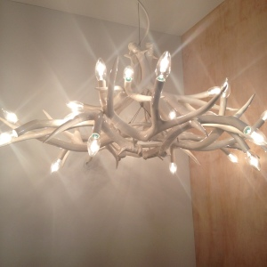 SCP antler light