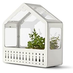 Mini Greenhouse, £25 from IKEA