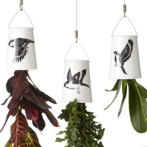 Three Birds Triple Pack Planters, £85 from boskke