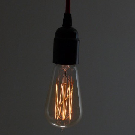 Vintage Light Bulb with Suirrel Cage Filament, £9.99 from Dowsing  Reynolds