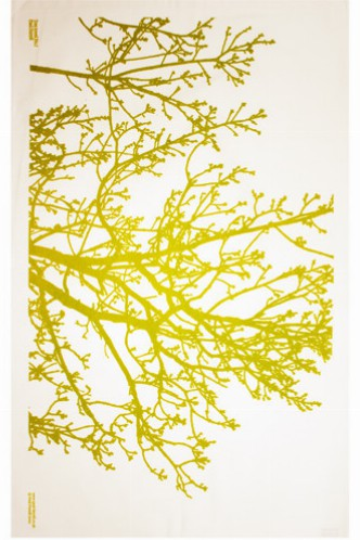Green Tree Tea Towel by Paul Farrell, £7.20 from The Tab Collective
