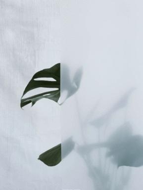 2. Split leaf print, £59