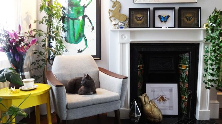 living-room-in-situ