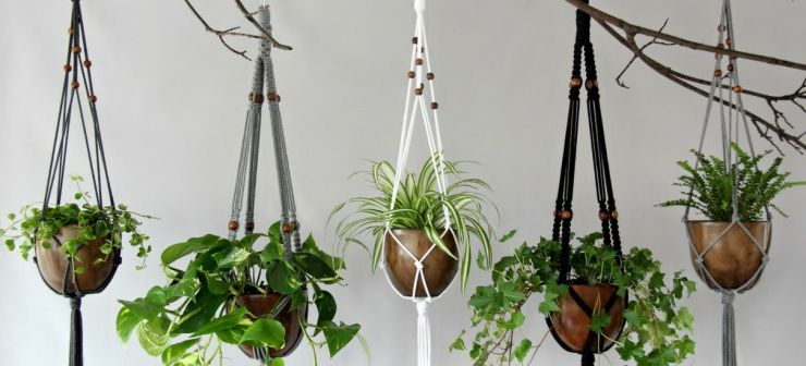 Macrame Plant Hangers from Breathing Nature